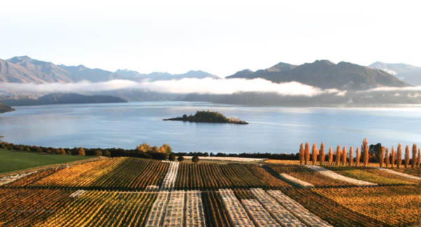 Rippon Winery Wanaka activities